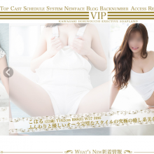 VIPの詳細特徴
